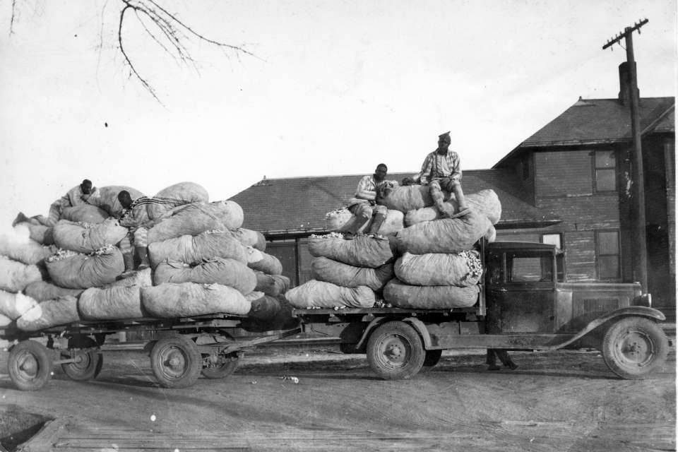 Cotton Truck #2: Inmates ride on bagged cotton on a truck and trailer at Parchman Farm circa 1930.