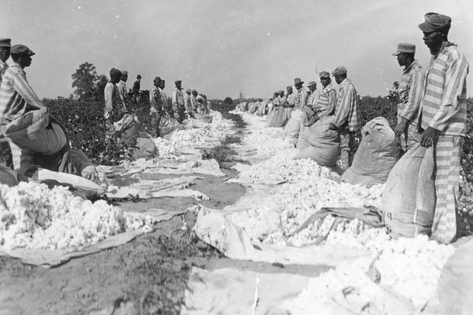 Parchman #28: Inmates lay out cotton for inspection on Parchman Farm circa 1930.