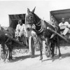 Parchman #29: Inmates ride in horse drawn carts on Parchman Farm circa 1930.
