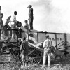 Harvester #1: Inmates operate a Case harvester on Parchman Farm circa 1930.